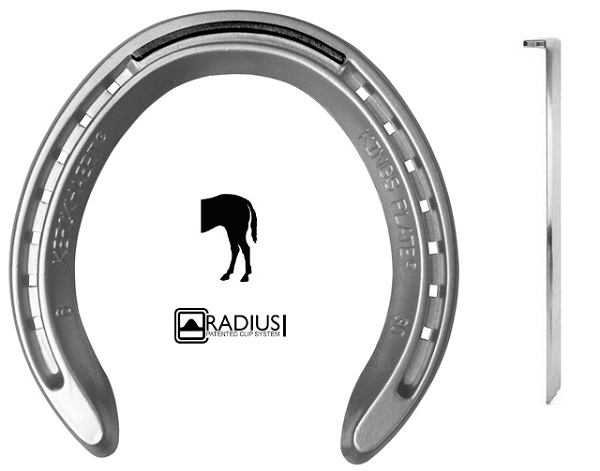 KINGS PLATE ALU HIND 29 1 CLIP (PAIR)